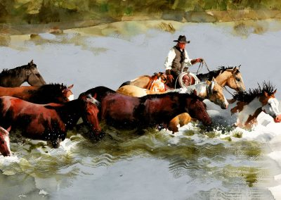 Equine-River-Crossing