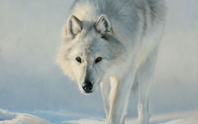 Wildlife Oil Paintings by Edward Aldrich